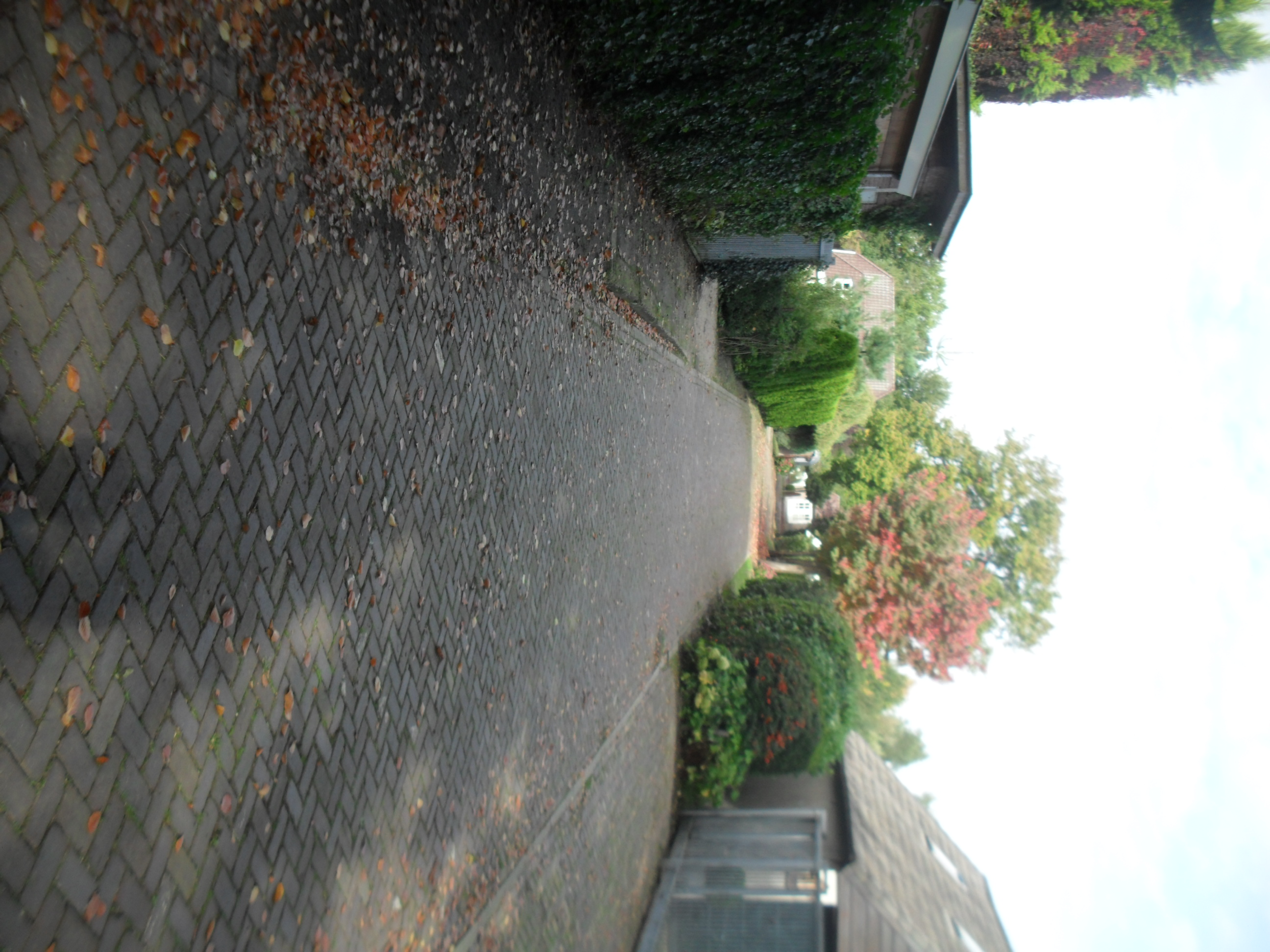 zijtak Dorpsstraat, eventueel kun je parkeren in de berm